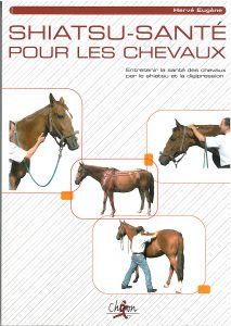 shiatsu santé pour les chevaux